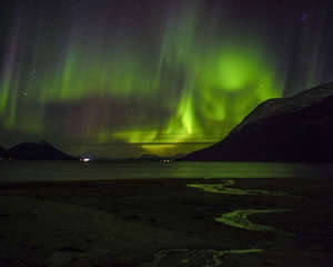 A Northern light (Aurora borelias) is seen near Tromsoe, Northern Norway on October 21, 2014.