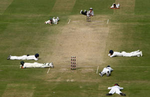Ricky Ponting and Matthew Hayden of Australia lie on the ground along with the Indian players and umpire Billy Bowden as a swarm of bees pass over the Feroz Shah Kotla Stadium on October 31, 2008 in New Delhi, India.
