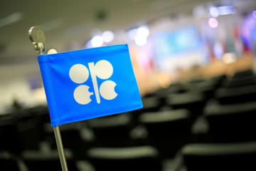 The logo of OPEC is seen at the organization's headquarter on the eve of the 164th OPEC meeting in Vienna, Austria on December 3, 2013.