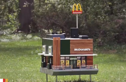 World's smallest McDonald's just opened - for bees