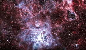 An artist captured a stunning image of the Tarantula Nebula