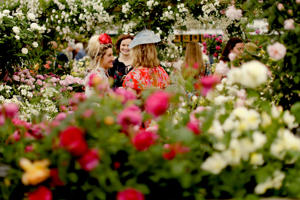 Visitors stand in a roses display at the RHS (Royal Horticultural Society) Chelsea Flower Show in London, Monday, May 21, 2018. The organizers consider the Chelsea Flower Show the world's most prestigious flower show and celebration of horticultural excellence and innovation. (AP Photo/Matt Dunham)