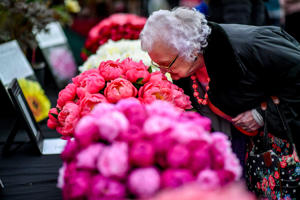 A woman smells some Paeonia at the Royal Horticultural Society flower show in Cardiff. (Photo by Ben Birchall/PA Images via Getty Images)