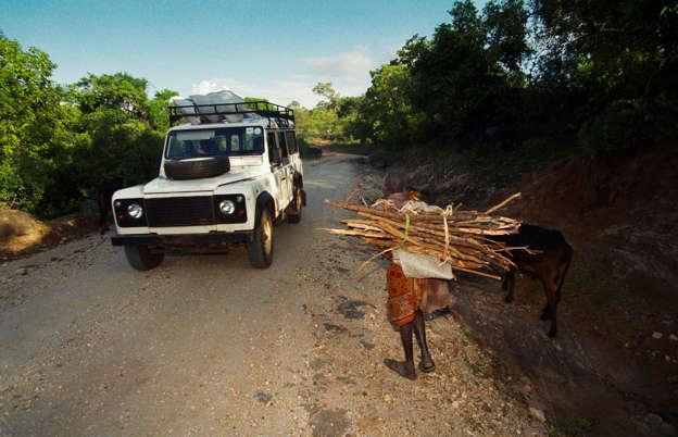As Fuel Prices Rise Firewood Rustlers Vex Rural Kenya