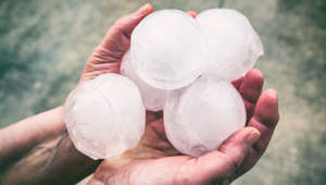 An unrecognizable women is showing a small group of very big ice hailstones just fallen from the sky with violence, holding in her hands. This picture was taken in selective focus on ice, white color sphere shape, impressive hail size has done a lot of damage in march in end of winter season outdoor.