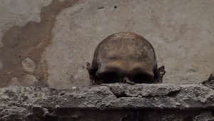 A church has gone viral for its skull with ears