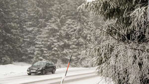 a man riding skis down a snow covered tree: A car drives past snow-covered fir trees on a road near Braunlage, on March 16, 2018, after heavy snow fell and temperatures fell again under zero degrees celsius.  / AFP PHOTO / dpa / Swen Pförtner / Germany OUT        (Photo credit should read SWEN PFORTNER/AFP/Getty Images)
