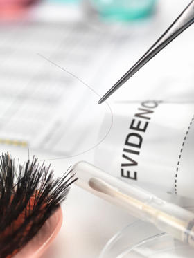 Folie 2 von 31: Hair sample collected from crime scene for genetic testing in laboratory