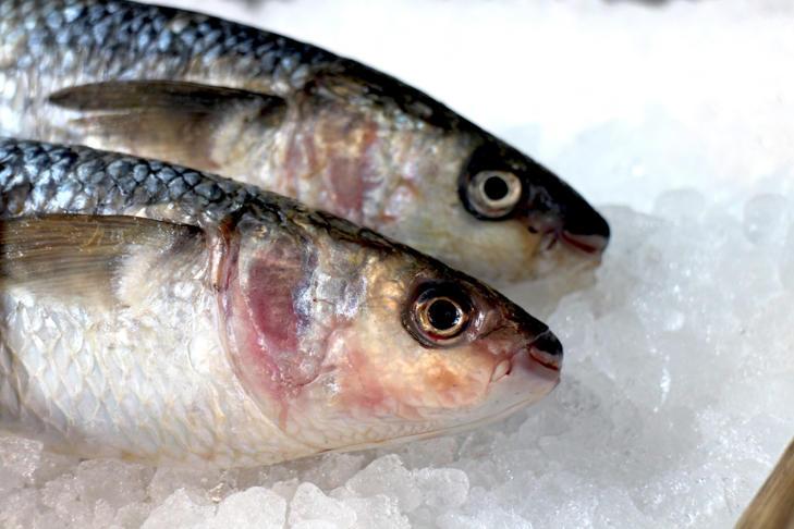 Fish Odour Syndrome