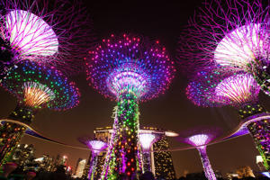 "Solar-powered ""Supertrees"" at Gardens by the Bay stand illuminated at night in front of the Marina Bay Sands hotel and casino in Singapore."