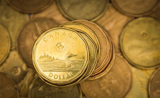 "A Canadian dollar coin, commonly known as the ""Loonie"", is pictured in this file photo."