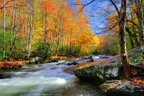 Great Smoky Mountains National Park. Chris Murray/Getty Images
