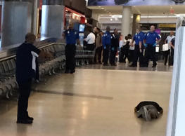 This photo provided by Richard Krezwick shows man on the ground at gunpoint. A portion of Newark Liberty International Airport was evacuated, Aug. 310, 2015, after police said a man made his way into a secure hallway.