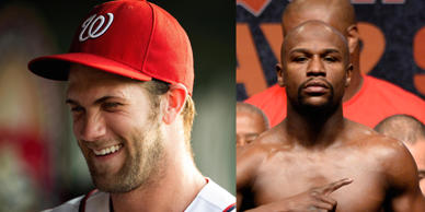 Bryce Harper and Floyd Mayweather