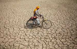 File: An Indian farmer pushes his bicycle past a parched paddy field in Ranbir Singh Pura, about 34 kilometers (21 miles) from Jammu, India, Tuesday, July 15, 2014. Delayed monsoon rains have raised fears of possible drought in some regions with the meteorological department reporting an acute deficit in rainfall in many areas, according to news reports.