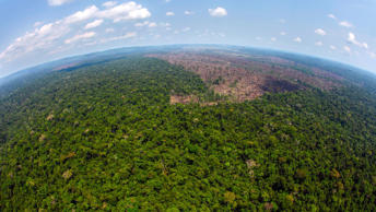 A deforested area is seen near Novo Progresso in the northern state of Para,  Brazil, Tuesday, Sept. 15, 2009.