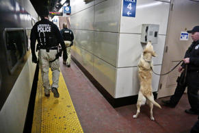 FILE - Homeland Security officers patrol a train platform at Penn Station in New...