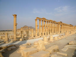 A view shows the colonnade in the historical city of Palmyra, Syria, August 5, 2010. The hardline Islamic State group has destroyed part of an ancient temple in Syria's Palmyra city, a group monitoring the conflict said on August 30, 2015.