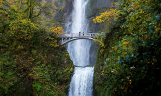 View of Multnomah Falls, a waterfall near Portland along the Columbia River Gorg...