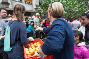Helpers distribute fruit to migrants waiting in front of the State Office for Health and Social Affairs in Berlin, Germany, September 3, 2015.