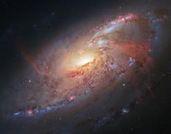 This image made by the NASA/ESA Hubble Space Telescope shows M106 with additional information captured by amateur astronomers Robert Gendler and Jay GaBany. Gendler combined Hubble data with his own observations to produce this color image. It is a relatively nearby spiral galaxy, a little over 20 million light-years away. The Hubble Space Telescope marks its 25th anniversary. A full decade in the making, Hubble rocketed into orbit on April 24, 1990, aboard space shuttle Discovery. (NASA/ ESA/ Hubble Heritage Team (STScI/AURA), R. Gendler via AP)