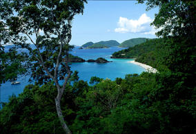 Trunk Bay is nestled on the island of St. John, United States Virgin Island in this undated photo.