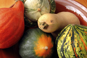 A variety of winter squash in a bowl, including acorn and butternut.