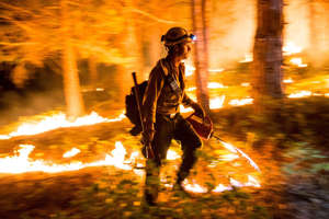 "A Fulton Hotshot lights a controlled burn on the so-called ""Rough Fire"" in the Sequoia National Forest, California, during a drought in August, 2015."