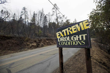 A sign among trees that were burned as the Valley Fire whipped through Middleton, California, September 14, 2015.