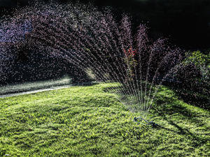 Even watering your lawn at a different time of day can save you money.