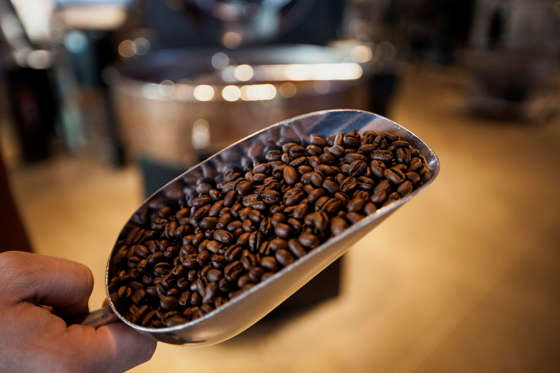 A scoop of roasted peaberry coffee beans from the Lake Toba region of Sumatra are displayed for a photograph at the Starbucks Corp. Reserve Roastery and Tasting Room in Seattle, Washington, U.S., on Wednesday, Dec. 3, 2014. The store is a 15,000-square-foot facility that combines a cafe with a coffee bean roastery as the chain boosts production of its Reserve line of premium coffee.