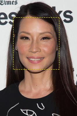 Hollywood actress Lucy Liu
