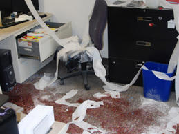 Samantha Lockhart was fined $1,000 after she trashed her supervisor's office with glitter, toilet paper and silly string Summit County Fiscal Office in Akron, Ohio.