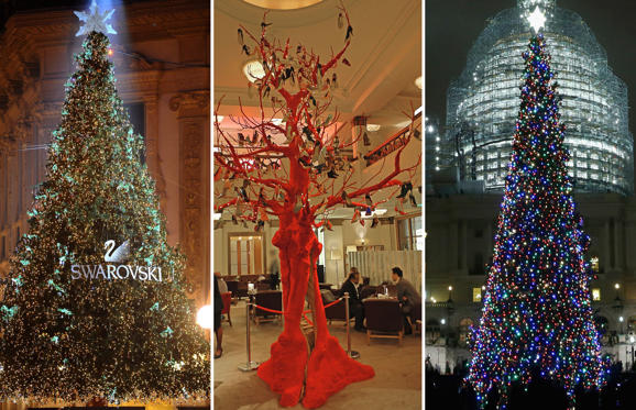 Diapositive 1 sur 28: The world's best Christmas trees