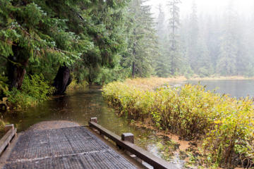Water from Ward Lake floods the the trail encircling it Thursday, Oct. 8, 2015, near Ketchikan, Alaska. The remnants of tropical storm Hurricane Oho are expected to bring more heavy rains and gusty winds to parts of southeast Alaska on Friday in what is a rare weather event.