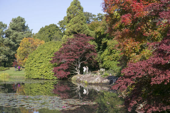 Diapositiva 1 de 44: Autumn colours in Sheffield Park gardens, Sussex, Britain - 13 Oct 2015 Hundreds of people flocked to Sheffield Park gardens in Sussex to view the spectacular Autumn colour display.