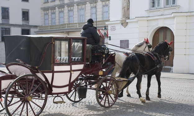 幻灯片 21 - 2: Vienna, Austria - March 17, 2013: Hackney carriages called 'Fiaker' carrying some guests through an empty alley in Vienna's First district, in March 2013