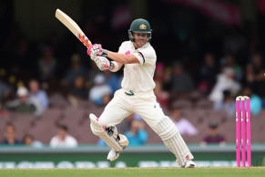 Australia's David Warner punished the West Indies bowling attack during the third test in Sydney.