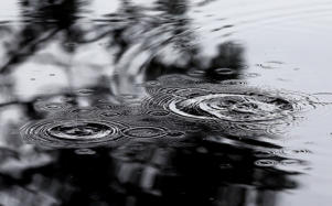 A Metservice spokeswoman said parts of the city had received up to 20mm of rain in about an hour, prompting floods.