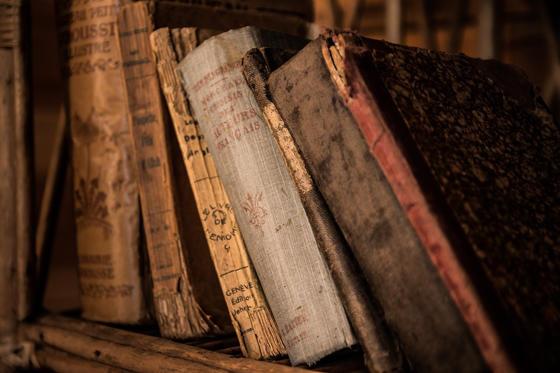 <p>Déforestation et livres électroniques obligent : les livres en format papier devraient bientôt arrêter d'être imprimés. Ceux qui existent aujourd'hui seront donc les seuls en circulation et deviendront de vraies pièces de collection. Un livre qui coûte aujourd'hui 30 $ pourrait coûter 300 $ dans 50 ans.</p>