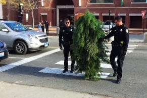 Police arrest man for blocking traffic while dressed as a tree