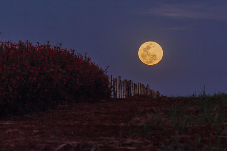 Supermoon rising, Piracicaba, Brazil, 2015.