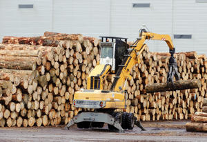 A log stacker stacks logs ready for export at CentrePort in Wellington, New Zealand