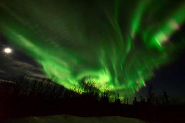 The Aurora Borealis appears in the sky on January 8, 2017 near Ester Dome mountain about 10 miles west of Fairbanks, Alaska. The Aurora Borealis is a result of the interaction between solar wind and the earth's magnetosphere.