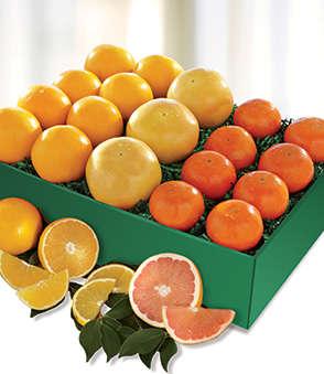 Harvey's Special Fruit Box