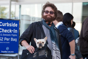 Zach Galifianakis in a still from 'Due Date', in which he plays a person who's annoying to travel with.