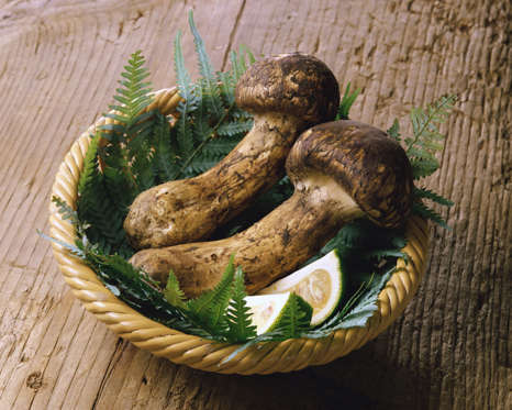 الشريحة 5 من 13: Matsutake mushrooms with Kabosu in Basket
