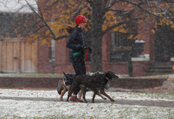 A jogger cuts a path around Washington Park with her dogs as a weak, autumnal storm sweeps over the intermountain West, Thursday, Nov. 17, 2016, and leaves a dusting of snow in Denver.