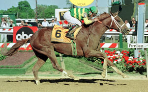 BALTIMORE, :  Jockey Chris Antley aboard Charismatic crosses the finish line of the Preakness Stakes at Pimlico Race Track 15 May 1999 in Baltimore, MD. Charismatic, who won the Kentucky Derby two weeks earlier, won the Preakness and now has a shot at the Triple Crown.