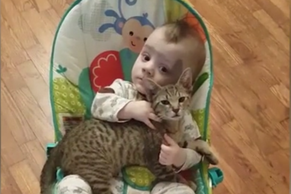 This baby won't let go of his kitten 'best friend'